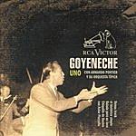 Roberto Goyeneche Uno