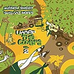 Matthew Sweet Under The Covers: Vol. 2