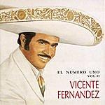 Vicente Fernández El Numero Uno, Vol.2