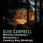 Glen Campbell Wichita Lineman/Galveston/Country Boy (Medley)