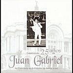 Juan Gabriel Celebrando 25 Años De Juan Gabriel En El Palacio De Bellas Artes