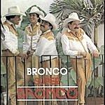 Bronco Bronco Super Bronco