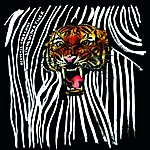 Acoustic Ladyland Living With A Tiger