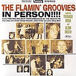 The Flamin' Groovies In Person!!!