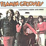 The Flamin' Groovies California Born And Bred