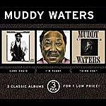 Muddy Waters Hard Again/I'm Ready/King Bee (3 Pak)