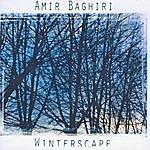 Amir Baghiri Winterscape
