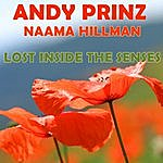 Andy Prinz Lost Inside The Senses