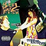 Reel Big Fish Turn The Radio Off (Parental Advisory)