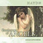 Franz Liszt Chamber Orchestra Rendezvous Of Angels - Haydn: Cello Concertos