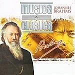 "Alfred Scholz Brahms Collection Vol. 1, ""hungarian Dances"""