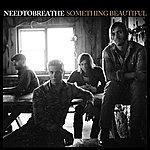 needtobreathe Something Beautiful (Single)
