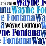 Wayne Fontana The Best Of Wayne Fontana