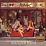 Alice The Love Junk Store