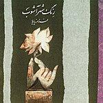 Faramarz Payvar Ensemble Reng E Shahr Ashub