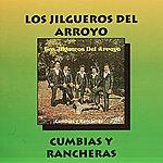 Los Jilgueros Del Arroyo Cumbias Y Rancheras