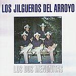 Los Jilgueros Del Arroyo Los Dos Menonitas