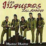 Los Jilgueros Del Arroyo Maria Maria