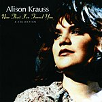 Alison Krauss Now That I've Found You - A Collection