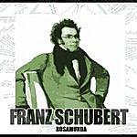 Franz Schubert Rosamunda