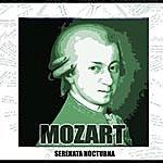 Wolfgang Amadeus Mozart Conciertos Y Serenata Nocturna En Re Mayor