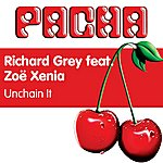 Richard Grey Unchain It (2-Track Single)
