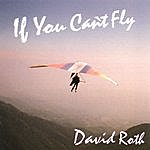 David Roth If You Can't Fly