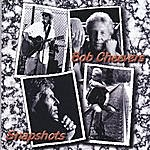 Bob Cheevers Snapshots (Compilation)
