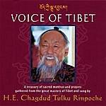 Chagdud Tulku Rinpoche Voice Of Tibet