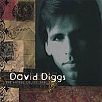 David Diggs The Artful Collection