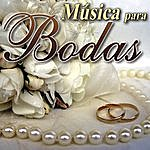 The Wedding Musica Para Bodas Vol.1