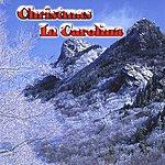 Lorraine Jordan Christmas In Carolina