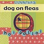Dog On Fleas Hoi Polloi