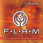 Flam F.l.a.m, Volume 1