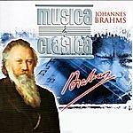 "Alfred Scholz Brahms Collection Vol. 5, ""a German Requiem"""