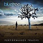 Blue Tree God Of This City (Performance Tracks)