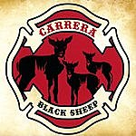 Carrera Black Sheep