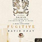 David Gray Fugitive  (Single)