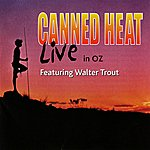 Walter Trout Live In Oz