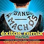 Banda Machos Exitos Remix