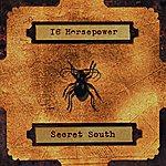 16 Horsepower Secret South