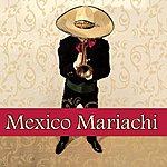 Grupo Hanyak Y Su Banda Mexico Mariachi