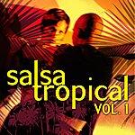 Emerson Ensamble Salsa Tropical Vol.1