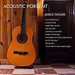 Wild Life Acoustic Portarait Of James Taylor