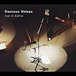 Caetano Veloso Live In Bahia