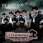 Grupo Exterminador Pa' Corridos... Exterminador