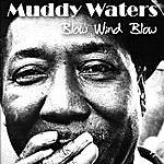 Muddy Waters Blow Wind Blow