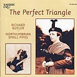 Richard Butler The Perfect Triangle