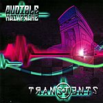 Audible Mainframe Transients