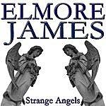 Elmore James Strange Angels